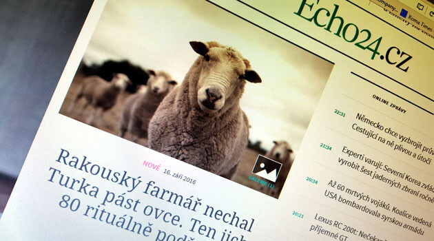 The disinformation article about slaughtered sheep that was published by news server Echo24.cz on 16 September 2016. (PHOTO:  Romea.cz)